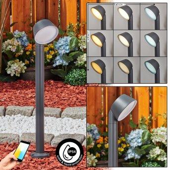 Moroni Wegeleuchte LED Anthrazit, 1-flammig