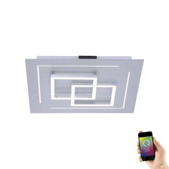 Paul Neuhaus Q-LINEA Deckenleuchte LED Aluminium, 1-flammig, Fernbedienung, Farbwechsler
