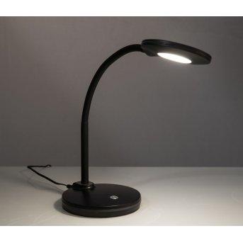 Nino Leuchten CARMEN Tischleuchte LED Schwarz, Weiß, 1-flammig
