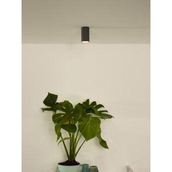 Lucide DELTO Downlight LED Grau, 1-flammig
