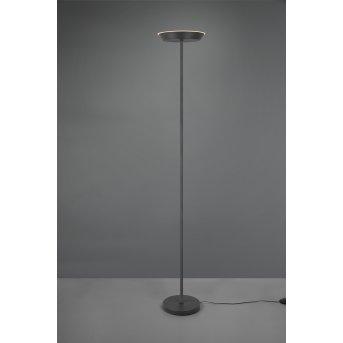 Reality Swona Stehleuchte LED Schwarz, 1-flammig