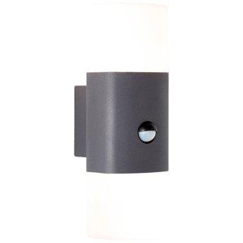 AEG Farlay Außenwandleuchte LED Anthrazit, 2-flammig, Bewegungsmelder